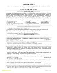 Entry Level Recruiter Resumese Driveeasy Co Corporate Hr