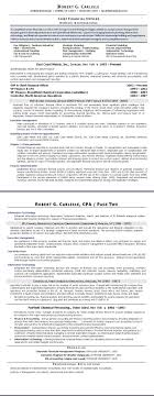 sample résumé chief financial officer (after)  executive resume