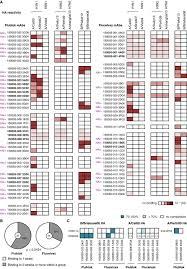 Monoclonal Antibody Responses After Recombinant