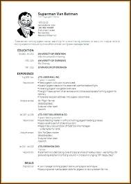 Microsoft Cv Template Cv Templates Free Download Word Document Examples 30 Lovely