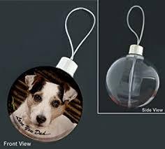 Amazonde Jack Russel Terrier Aufschrift Dad Motiv