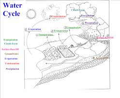 The Water Cycle Diagram | Diagram Site