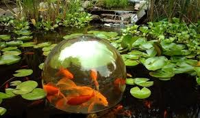 koi pond lighting ideas. plain pond add a sphere gives raised viewing platform to the koi we think they like  looking around and seeing new views for koi pond lighting ideas e