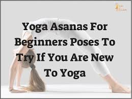 yoga asanas for beginners poses to try if you are new to yoga yogin rainbow