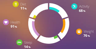 Jquery Highcharts Double Donut Chart Donut Within Donut