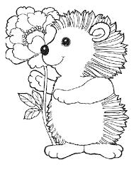 Hedgehog Coloring Pages Color Me Pinte