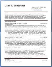 10 Human Resources Executive Resume Writing Sample
