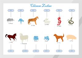 Chinese Zodiac Diagram Free Chinese Zodiac Diagram Templates
