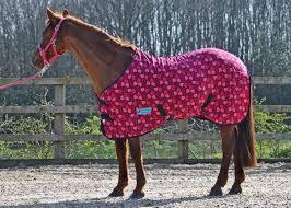 heart fleece rug standard sizes