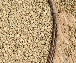 Boost your energy level with. Green Coffee Beans Wholesale Buy Green Coffee Beans In Bulk