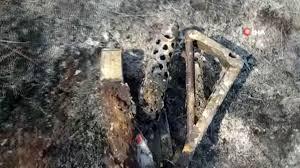 Son dakika haberleri: Kore Savaşı ve Kıbrıs Harekatı'nda kullanılan silah  yanan ormanlık alanda bulundu - Haberler 3. Sayfa