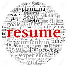 The Word Resume Free Resume Example And Writing Download