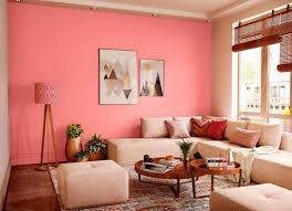 guava pink n house paint colour shades