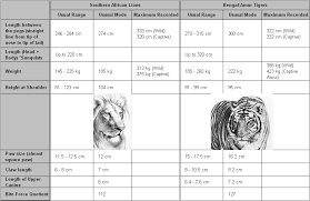 Lion Tiger Size Comparison Informed Opinions