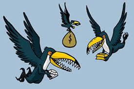 Resultado de imagem para tucanos
