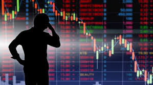 Chop, smoke, ice, sand, magma last stock: How Do Stock Market Experiences Shape Wealth Inequality
