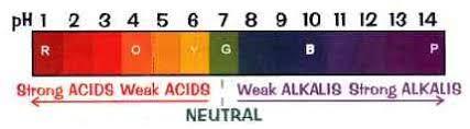 Bicarbonate Indicator Colour Chart Ph Paper Eramanath