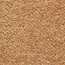 carpet texture. brown carpet texture