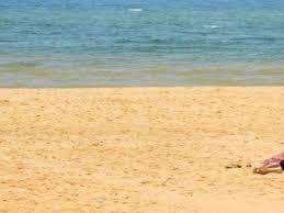 Odisha To Fix Coast Erosion Though Natural Process The