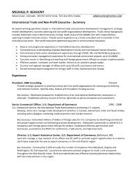Resume Objective Examples Non Profit Awesome Collection