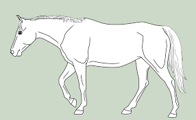 template horse template walking horse by mausergirl on deviantart