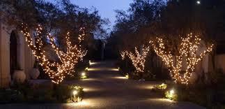 lighting outdoor trees. Light Dr (3) Lighting Outdoor Trees