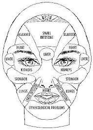 Face Chart Reflexology Health Acupressure