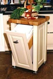 Kitchen Trash Can Ideas Best Inspiration Design