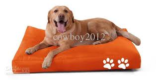orange dog bed. Fine Orange Picture As Following In Orange Dog Bed Y