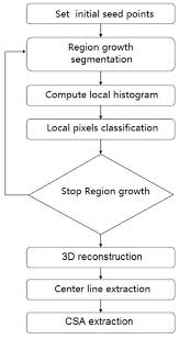 Csa Points Chart A Schematic Flow Chart For The Solution Algorithm