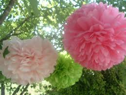Pom Pom Decorations 6 Tissue Paper Pom Poms Ready To Fluff Choose Your Colors Party