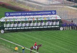 Breeders Cup Charts 2010 Lessons From The 2011 Breeders Cup At Churchill Downs A