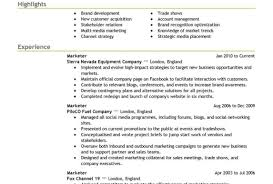 Resume Professional Resumes We Can Help With Professional Resume