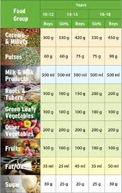 Nutrient Rich Daily Meal Plan For Your Child Nutrition Diet