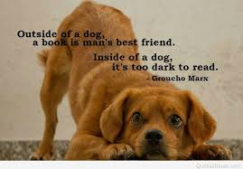 Quotes About Dogs And Friendship Delectable Beautiful Friendship Quote With Tiger And Man