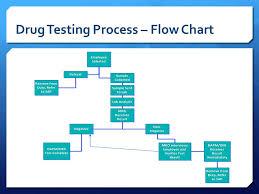 Diana Delivered By Beginner Program Chart Management Flow