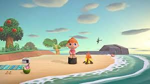 Animal Crossing: New Horizons - Nintendo Switch ... - Amazon.com