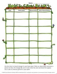 Plant Growth Observation Chart Pin On Curriculum