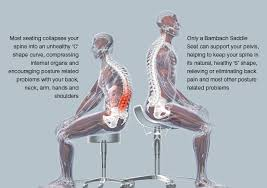 ergonomic chair betterposture saddle chair. an unhealthy posture on a normal seat and healthy saddle ergonomic chair betterposture