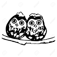 2 羽の鳥フクロウの画像2 つの雛が枝の小さなフクロウの上に座ってフリーハンドの描画ペン白の背景