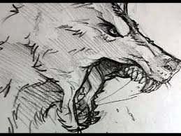 werewolf face drawing. Brilliant Drawing How To Draw A Wolf Head Werewolf Pencil Work Step By Throughout Face Drawing L