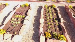 little known secrets of organic soil