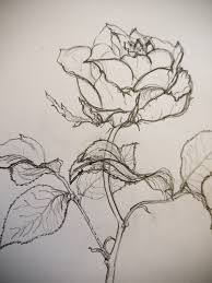 jean a tracy s art classes jean displays great attention to detail balance proportion and depth in this successful and