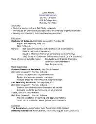 Work Resume Examples