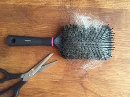 Bilderesultat for børste med masse hår