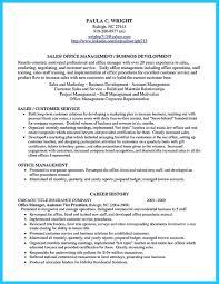 Business Development Resume Sample Senior Business Development Manager Resume Samples Professional 41