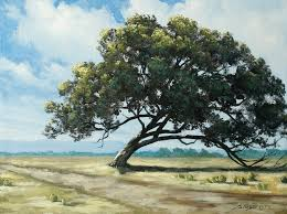 texas tree an acrylic painting lesson on dvd