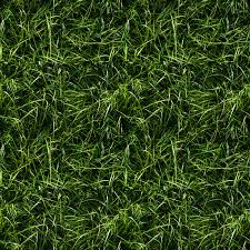 seamless grass texture game. Grass Texture 4. Seamless Game