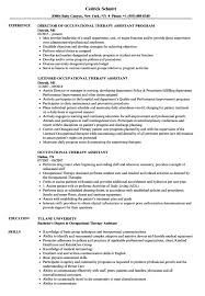 Occupational Therapy Resume Occupational Therapy Resume Marvellous Inspiration Ideas Essay 17