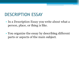 types of essays description essay<br
